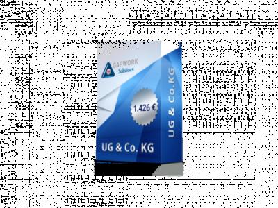 UG & CO.KG 1.426 € +19% PDV